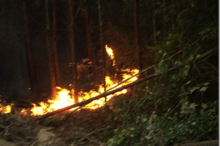 PORTER RESPONDS TO 9 ACRE FOREST FIRE