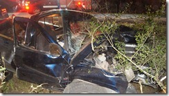 MAN CRITICAL AFTER AUTO TREE CRASH