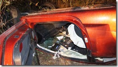 VEHICLE FLIPS AND HITS TREE-DRIVER FLEES