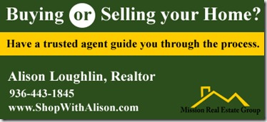 loughlin realty