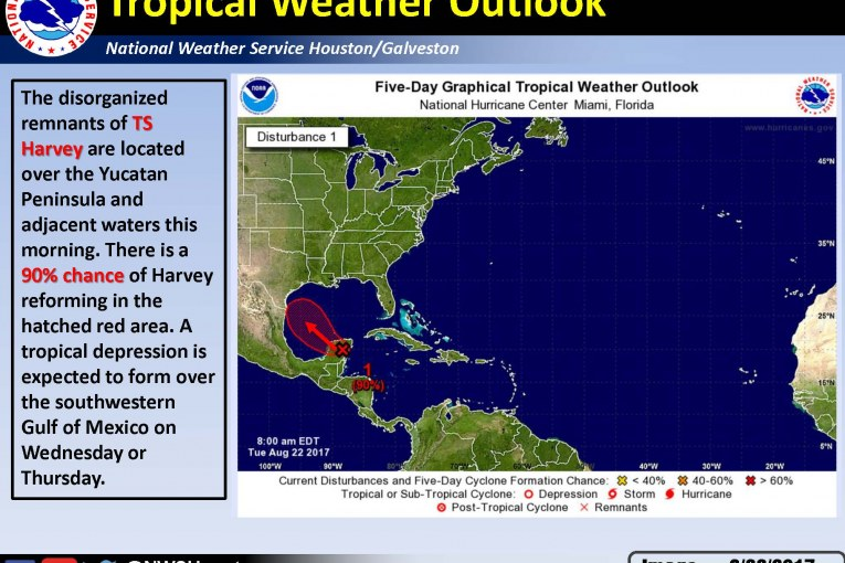 TROPICAL DEPRESSION FORMATION IN GULF POSSIBLE NEXT FEW DAYS