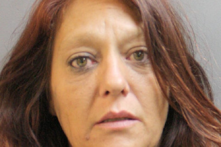 VETTE STOLEN, WOMAN ARRESTED IN HOME INVASION
