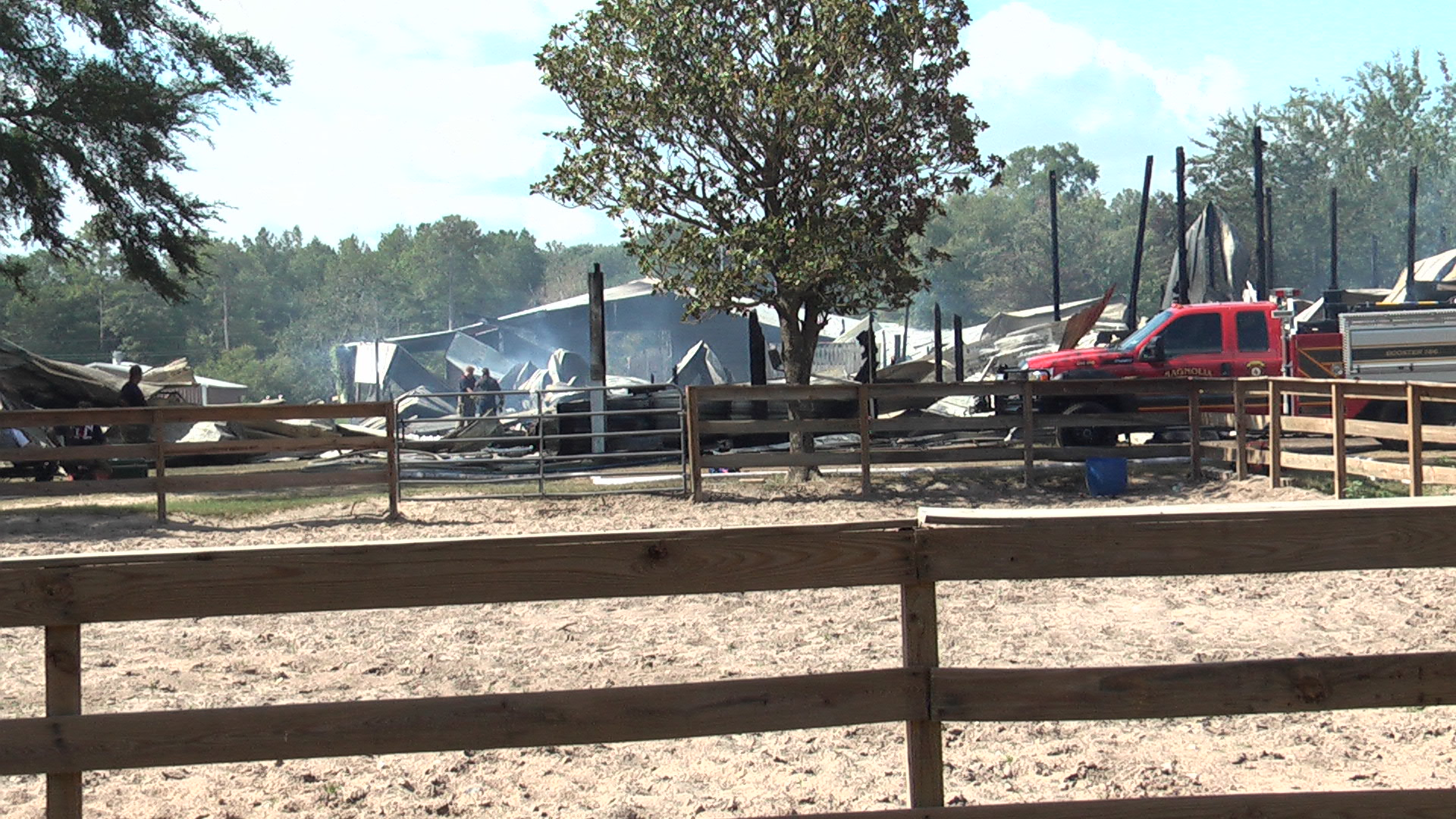 FIRE IN MAGNOLIA LEAVES 14 HORSES DEAD