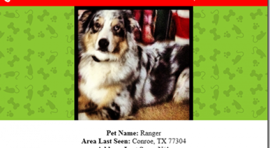 MISSING IN CONROE