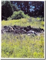 Signed Bailey 12 acre_Page_13