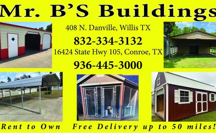 MR. B'S BUILDINGS