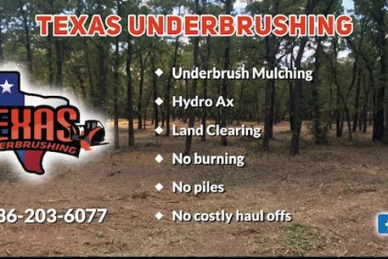 TEXAS UNDER BRUSHING