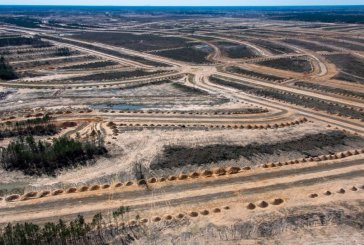 Eight TCEQ Investigations Reprimand Colony Ridge Construction Practices-Plum Grove Development