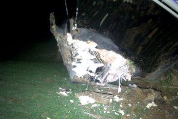 UPDATE ON LAKE CONROE FATAL BOAT CRASH