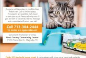 LOW COST SPAY AND NEUTER CLINIC