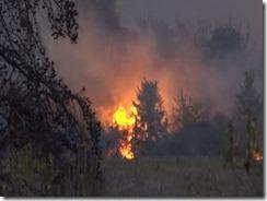 101915 WALKER CO WILD FIRE.Still011