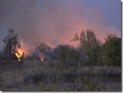 101915 WALKER CO WILD FIRE.Still014