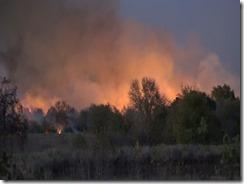 101915 WALKER CO WILD FIRE.Still015