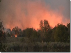 101915 WALKER CO WILD FIRE.Still016