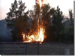 101915 WALKER CO WILD FIRE.Still018